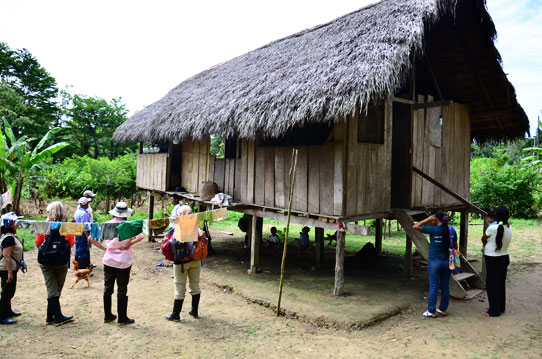 Jivinson's-House