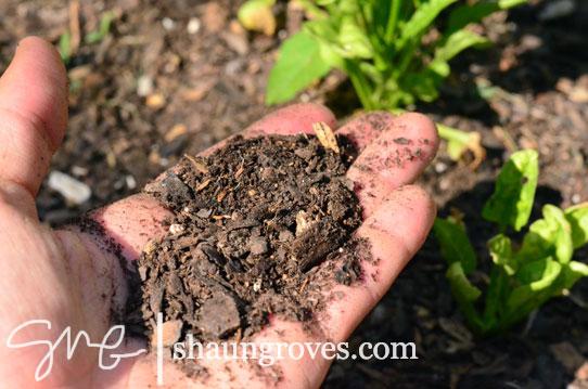 Soil-In-Hand