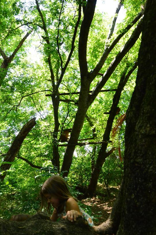 Penelope climbing a tree