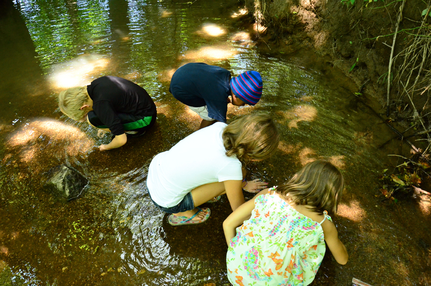 Treasure hunting in the creek
