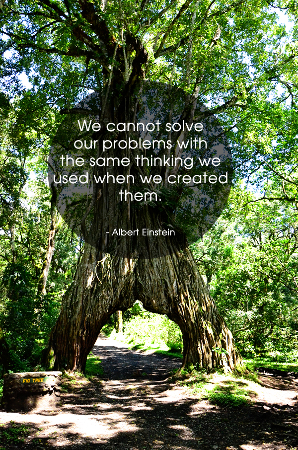We cannot solve our problems thinking quote Einstein