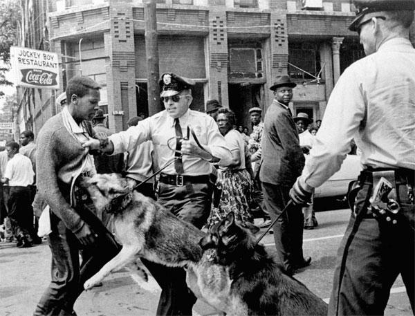 Police dog attacking man in Birmingham
